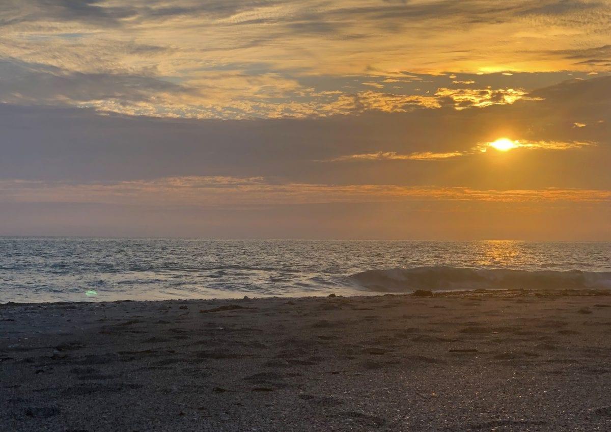 Outdoor Beach Programs Return Oct. 9!